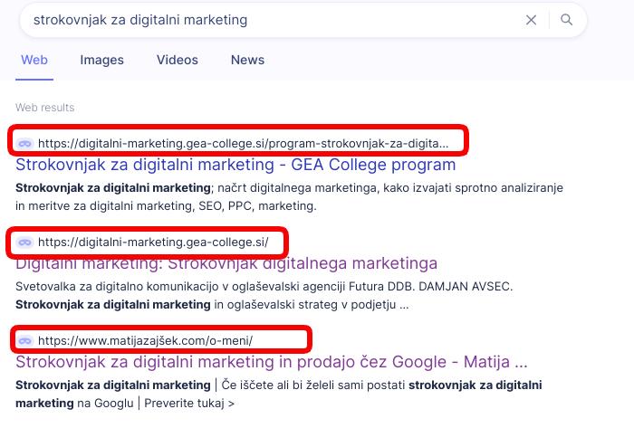 kljucna beseda strokovnjak za digitalni marketing url naslov